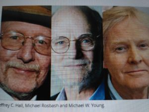 Jeffrey C. Hall, Michael Rosbash and Michael W. Young