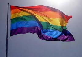 bandera de los homosexuales