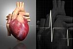 """""""Corazón humano"""""""